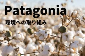 【パタゴニアの環境保護活動】パタゴニアの原点を徹底解説! patagonia