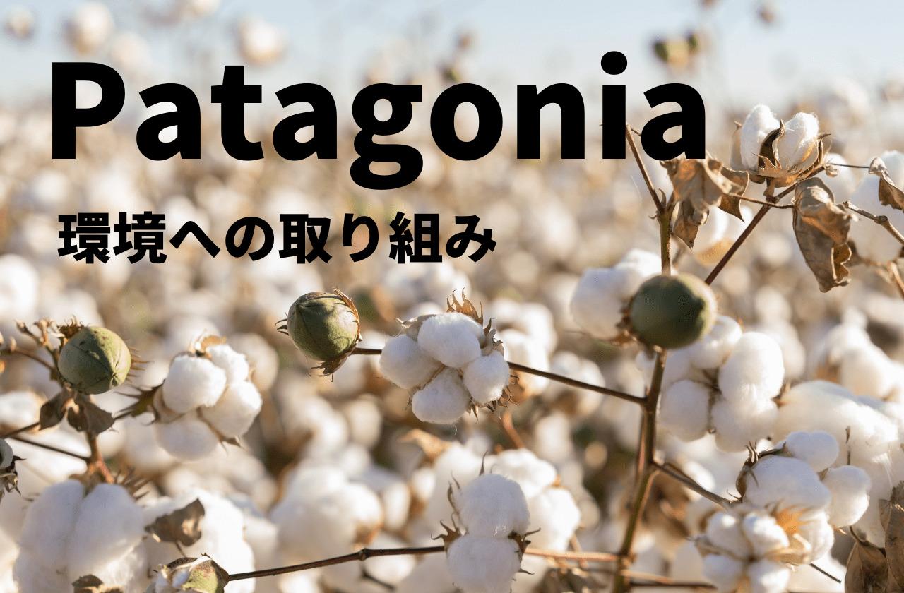 【パタゴニアの環境保護活動】パタゴニアの原点を徹底解説!|patagonia