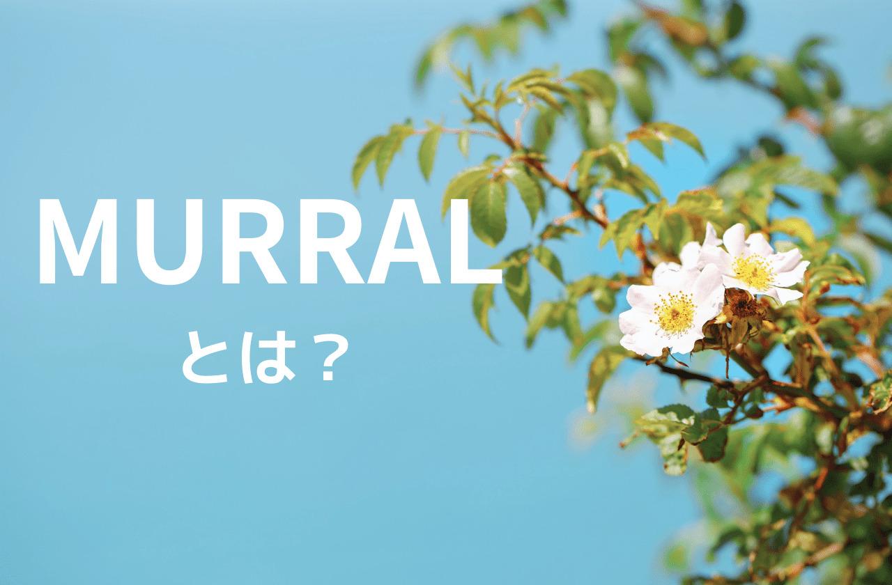 MURRALって何?自然をモチーフに繊細な表現をするレディースブランド|ミューラル